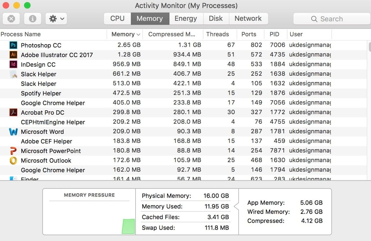 Screenshot of the Activity Monitor (My Processes) window on a Mac